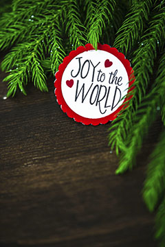 Joy to the world web small
