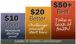 Levels of monthly commitment
